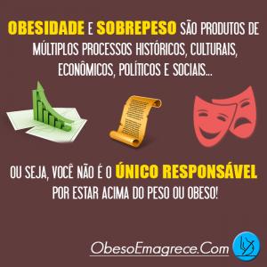 Obesidade e Sobrepeso: Frutos De Vários Produtos...
