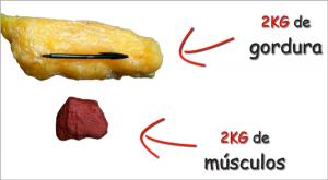 musculação emagrece - imagem comparando espaço ocupado por 2kg de gordura contra 2kg de músculo