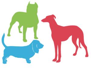 tipos de corpo - representação gráfica diferentes tipos de cachorros