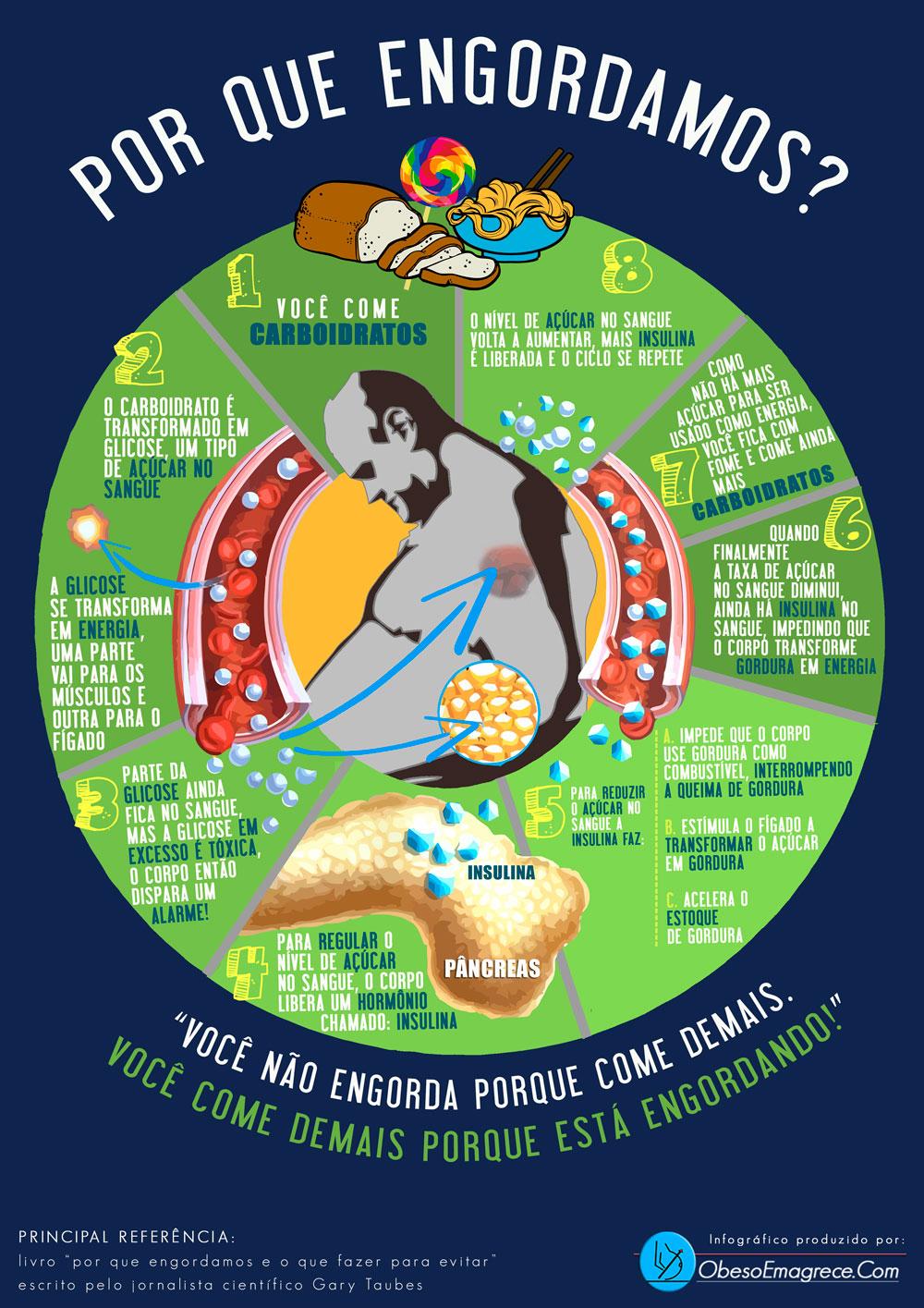 Low carb é para todos? | infográfico representando que explica o ciclo vicioso da fome e o porque engordamos baseado no livro de Gary Taubes