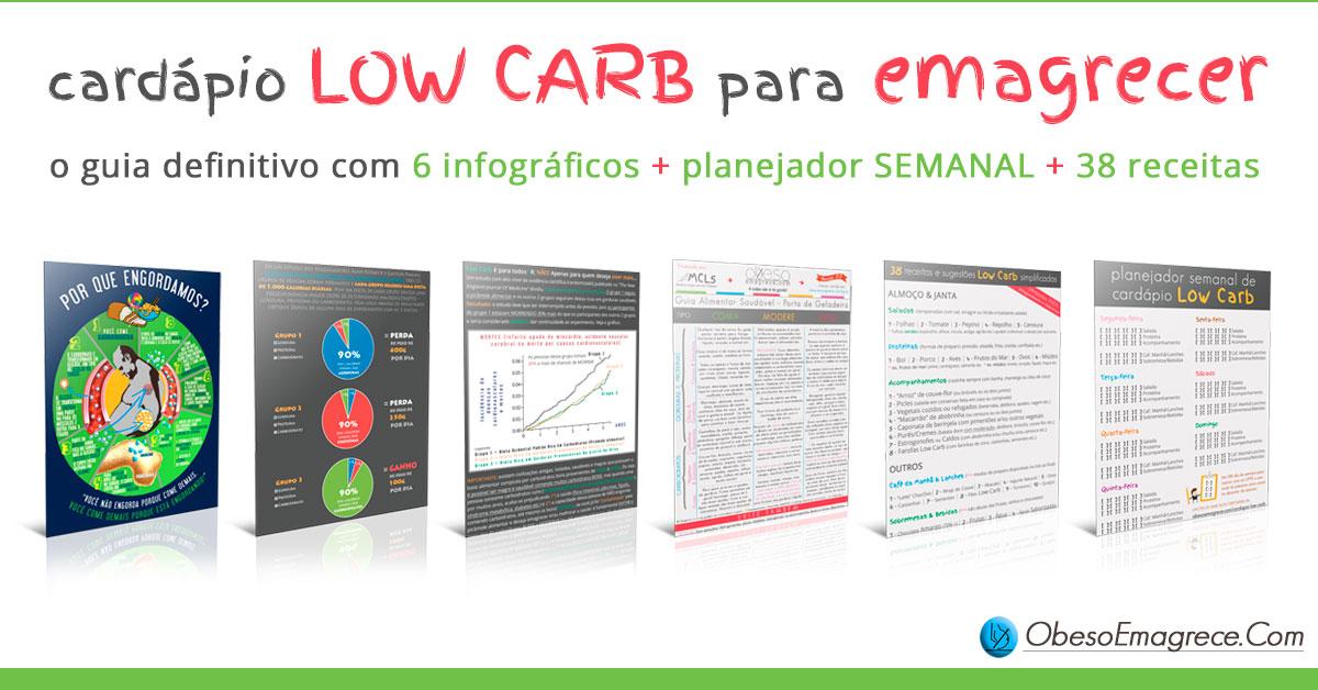 cardápio low carb para emagrecer - imagem com a representação de 6 infográficos + planejador semanal + 28 receitas